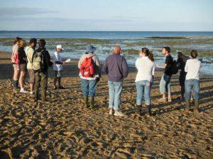 Explorateurs du littoral - Saint Georges de Didonne, Ile aux Mouettes @ Ile aux Mouettes, pointe de Vallières | Saint-Georges-de-Didonne | Nouvelle-Aquitaine | France