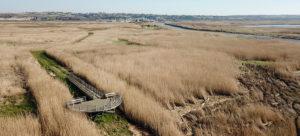 Echappée Nature Le marais de Mortagne, entre Terre et Mer @ Port de Mortagne sur Gironde | Mortagne-sur-Gironde | Nouvelle-Aquitaine | France