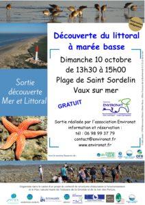 Explorateur du littoral à marée basse, Algues et Bogorneaux - conche de Saint Sordelin - Vaux sur mer @ conche de Saint Sordelin | France